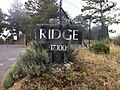 Ridge Vineyards at Monte Bello.jpg