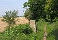 Ridgeway Trigpoint - geograph.org.uk - 184417.jpg