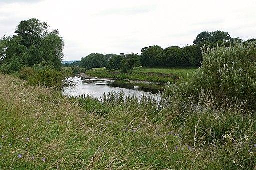 River Wharfe (3724512598)