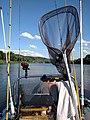 River fishing - panoramio (3).jpg
