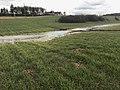 Rivière de Sougère-en-Puisaye en mars 2018 - 1.JPG