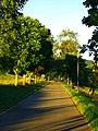 Road - panoramio (107).jpg