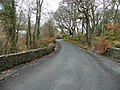 Road at Drummonaghan - geograph.org.uk - 1757213.jpg