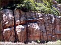 Rock Wall, Oak Creek Canyon, AZ 7-30-13c (9512207118).jpg