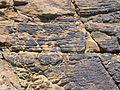 Rock texture land.jpg
