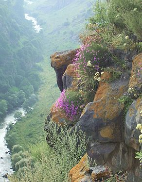 Rocks over the Dzoraget River Canyon.jpg