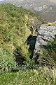 Rocky outcrop, Craig y Mwn - geograph.org.uk - 979723.jpg