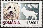 Romanian-Shepherd-Canis-lupus-familiaris Romania 2005.jpg