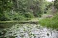 Rosenfors-48 (9149445295).jpg