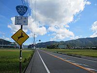 Route303 Wakasa.jpg