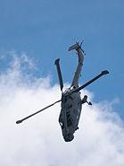 Royal Navy Black Cat Lynx