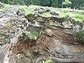 Ruine Gemisara 23.JPG