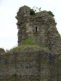 Ruine kasteel Montfort Limburg.jpg