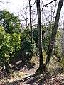 Ruines @ Poype de Ternier @ Parcours d'Orientation Patrimoine du Hameau de Ternier @ Saint-Julien-en-Genevois (51069869063).jpg