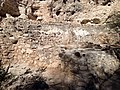 Ruins in Montezuma Castle NM 1.JPG