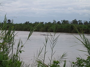 Ruzizi River - Hippopotami in the Ruzizi River in Burundi
