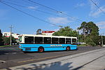 Photo of a Ryan's bus in Mount Alexander Road, 2013.