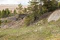 Ryllshyttan Bergslagssafari 02.jpg