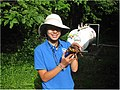 SCA intern at Patuxent Research Refuge (6962514899).jpg