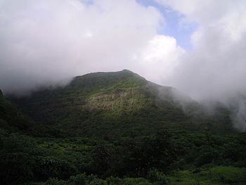 Safari- Tamhani Ghat.jpg