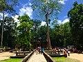 Sangkat Nokor Thum, Krong Siem Reap, Cambodia - panoramio (47).jpg