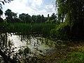 Savran River in Savran 2.jpg