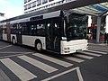 Schulbus.jpg