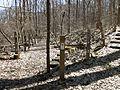 Self-guided nature trail at Latodami Nature Center - 3.jpeg