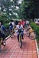 Sepeda UI.jpg