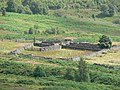 Sheep pens - geograph.org.uk - 37501.jpg