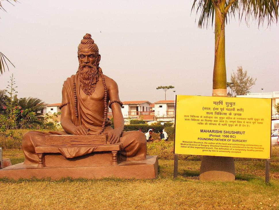 Shushrut statue