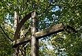 Siary, cmentarz wojenny nr 76 (HB4).jpg