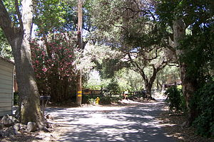 Modjeska Canyon, California - Side street