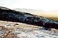 Sierra de Ayllón, invierno 1975 09.jpg