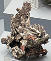 Silver and copper (Mesoproterozoic, 1.05-1.06 Ga; Cliff Mine, Keweenaw County, Upper Peninsula of Michigan, USA) (17099329679).jpg