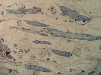 Blueschist - Photomicrograph of blueschist facies quartz sediment, Sivrihisar, Turkey