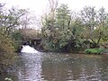 Sluice on the river Parrett near Drayton - geograph.org.uk - 598151.jpg