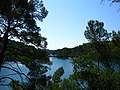 Small Lake, Island of Mljet, Croatia.JPG