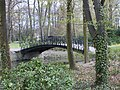 Small bridge in Sczytnicki Park - panoramio.jpg