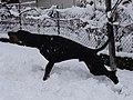 Snow doby.jpg