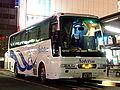 Sotetsu-bluelight-20070303.jpg