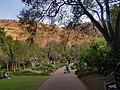 South Africa beauty.jpg