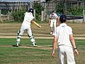 Southwater CC v. Chichester Priory Park CC at Southwater, West Sussex, England 018.jpg