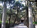 Spirit way to confucius tomb 2005 04 21.jpg