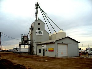 Spruce Grove - Grain elevator in Spruce Grove, 2009.