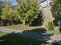 Stadtmauer Braunau am Inn 15.JPG