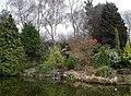 Stapeley Water Gardens - geograph.org.uk - 328633.jpg