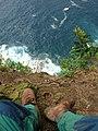 Starr-050405-5890-Schinus terebinthifolius-habitat with Forests boots-Keopuka-Maui (24447482380).jpg
