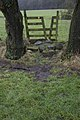 Stile on footpath near Helbeck Wood - geograph.org.uk - 1670923.jpg