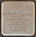 Stolperstein für Schwarz Tamas (Lendava).jpg